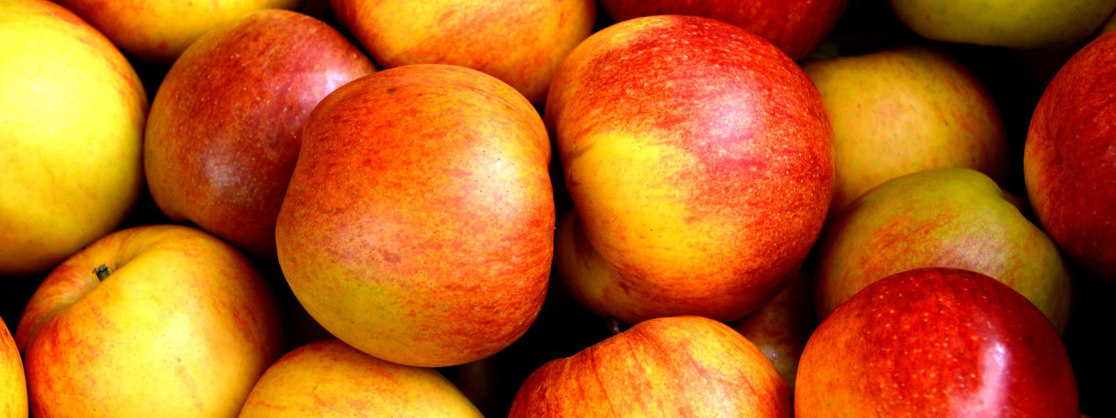 manzanas-banner